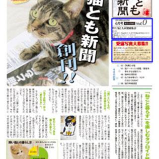 猫との暮らしをより楽しむための情報iPhoneアプリ:猫とも新聞
